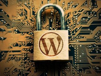 Learn more about the basics of WordPress development and design